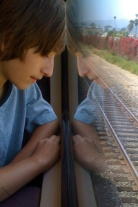 Reflective photo on the train